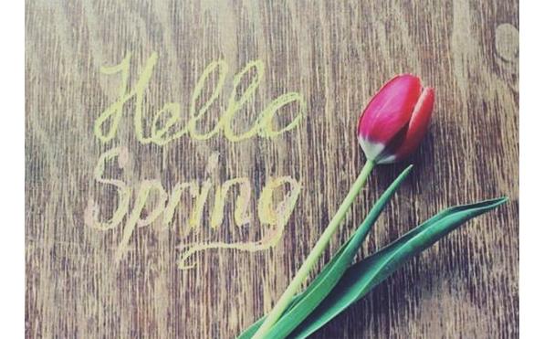 Советы от Доктор Нонны: Весна! Все цветёт и обостряются кожные заболевания!
