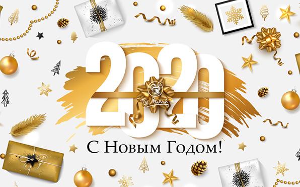 Видео поздравление Доктор Нонны и президента компании Михаила Шнеерсон с Новым 2020 Годом!