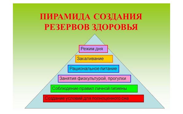 Пирамида здоровья (отчёт о встрече в Facebook 19.08.2020)